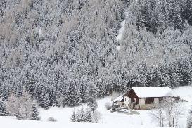 Silvester hütte schwarzwald